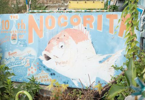 ノコリータのイメージ